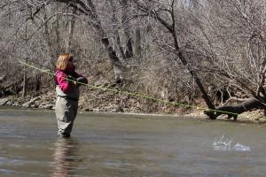 Root River steelhead fly fishing