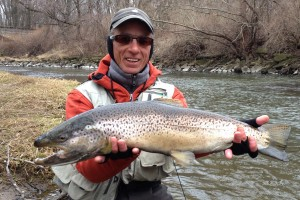 Root River brown trout fly fishing